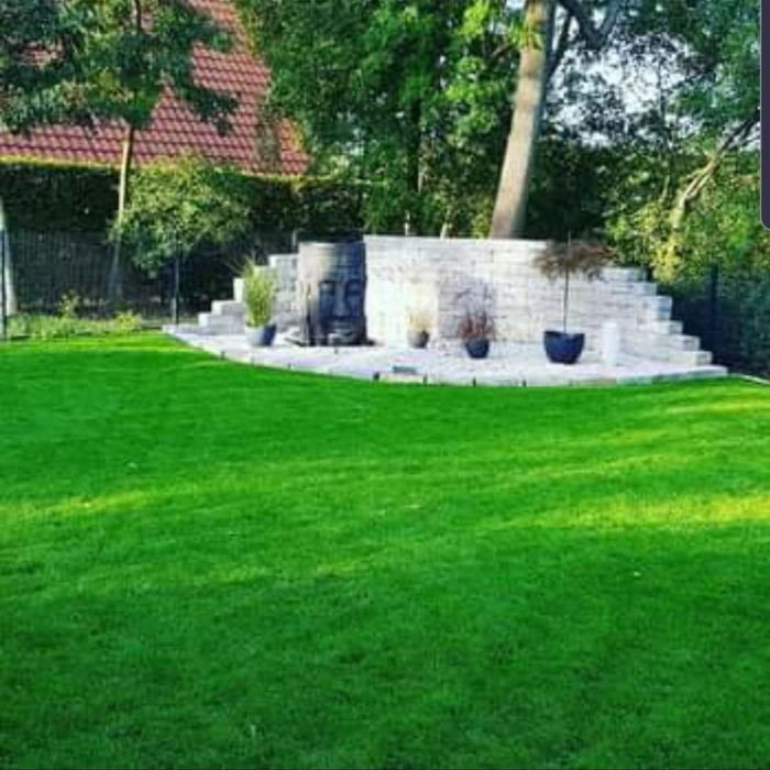 Bv Algermissen Gartenbau 1